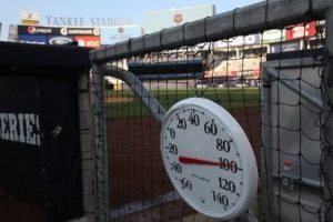 field thermometer