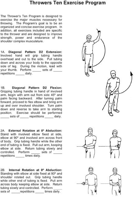when and while exercises pdf